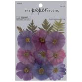 Violet Skies Pressed Flowers
