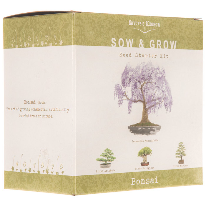 Bonsai Tree Starter Kit Hobby Lobby 1725498