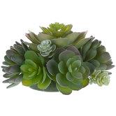 Succulent Cake Topper