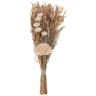 Category Dried Flowers