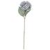 Gray Hydrangea Stem