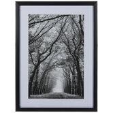 Black & White Trees Framed Wall Decor