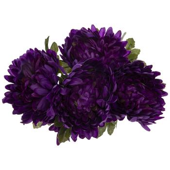 Purple Mum Bush