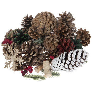 Brown, Red & Green Pinecones With Birch Filler