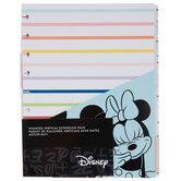 Mickey & Minnie Happy Planner Accessories
