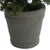 Potted Christmas Tree With Gumball Dual Color LED Lights - 4'