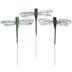 Green & Black Dragonflies