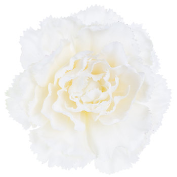 True Touch Carnation Stem