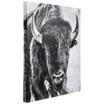 Black & White Bison Canvas Wall Decor