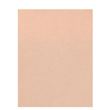 """Nude Metallic Scrapbook Paper - 8 1/2"""" x 11"""""""
