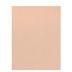 Nude Metallic Scrapbook Paper - 8 1/2