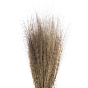 Dried Grass Bundle