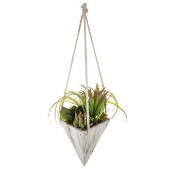 Air Plants in Hanging Marble Triangle Planter