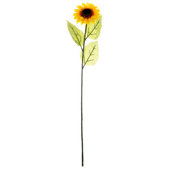 Yellow Sunflower Stem