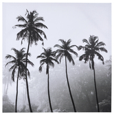 Black & White Palm Trees Canvas Wall Decor