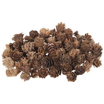 Mini Pinecones