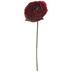 Flame Red Ranunculus Pick