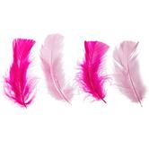 Pink Mix Turkey Plumage