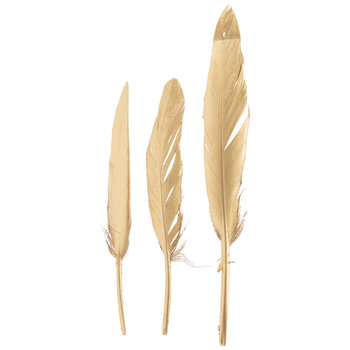 Gold Craft Feathers