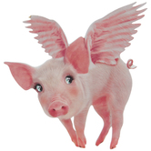 Flying Pig Painted Wood Shape