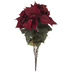Burgundy Velvet Poinsettia Bush