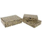 Gold Foil Leopard Print Box Set