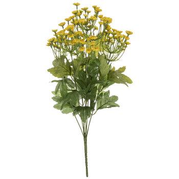 Yellow Queen Anne's Lace Bush