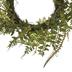 Fern Wreath