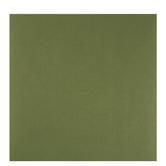"""Green Jewel Textured Cardstock Paper - 12"""" x 12"""""""