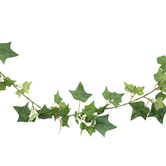 Green Mini English Ivy Garland