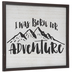 Born For Adventure Wood Wall Decor