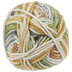 Harvest Hues I Love This Cotton Yarn