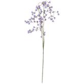 Purple Flower Branch