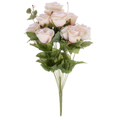 Light Pink Rose Bush