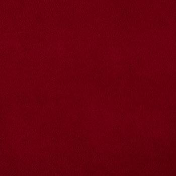Crimson Anti-Pill Fleece Fabric