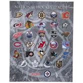 NHL Logo Canvas Wall Decor