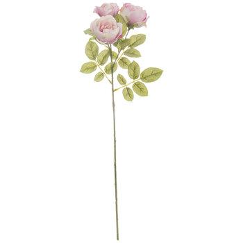 Diana Tea Rose Stem