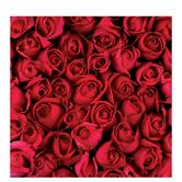 "Red Roses Scrapbook Paper - 12"" x 12"""
