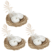Nests With Speckled Eggs & Feathers