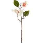 Cream Magnolia Pick