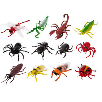 Insects Value Pack
