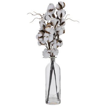 Cotton Stems In Glass Vase