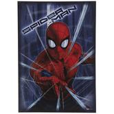 Spider-Man Web Blast Wood Wall Decor