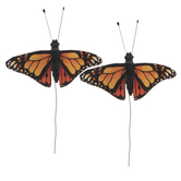 Monarch Butterflies - Small
