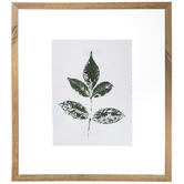 Green Leaf Impression Framed Wall Decor