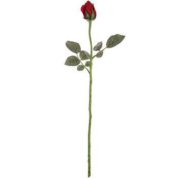 Red Princess Rose Bud Stem