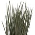 Dried Flax Grass Bundle