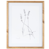 Sketched Lavender Framed Wall Decor