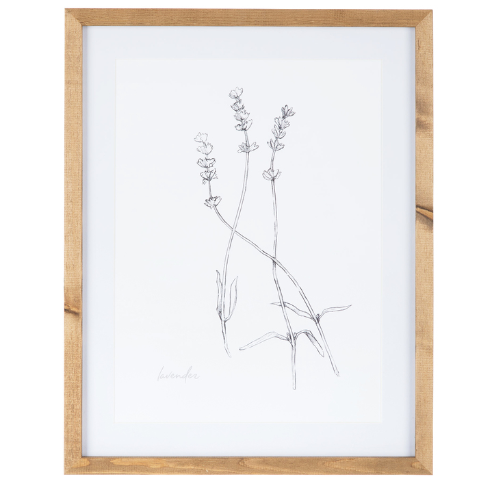 Sketched Lavender Framed Wall Decor Hobby Lobby 1652163