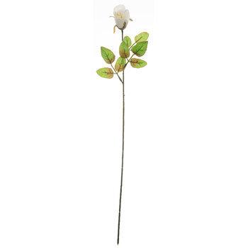 Rose Bud Stem